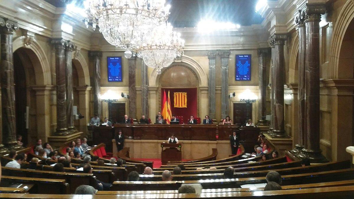 Amb el COCARMI, lamentem la manca de consens al Parlament per crear una comissió sobre la discapacitat
