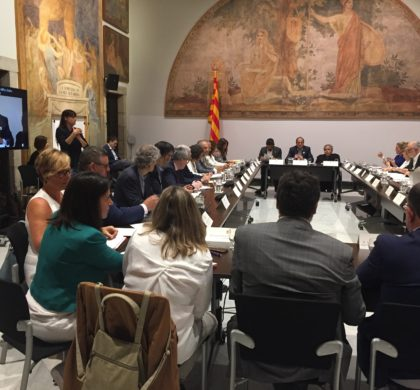 Participem a la reunió del CODISCAT, on s'anuncia la constitució del Pacte Nacional per a les Persones amb Discapacitat el juliol