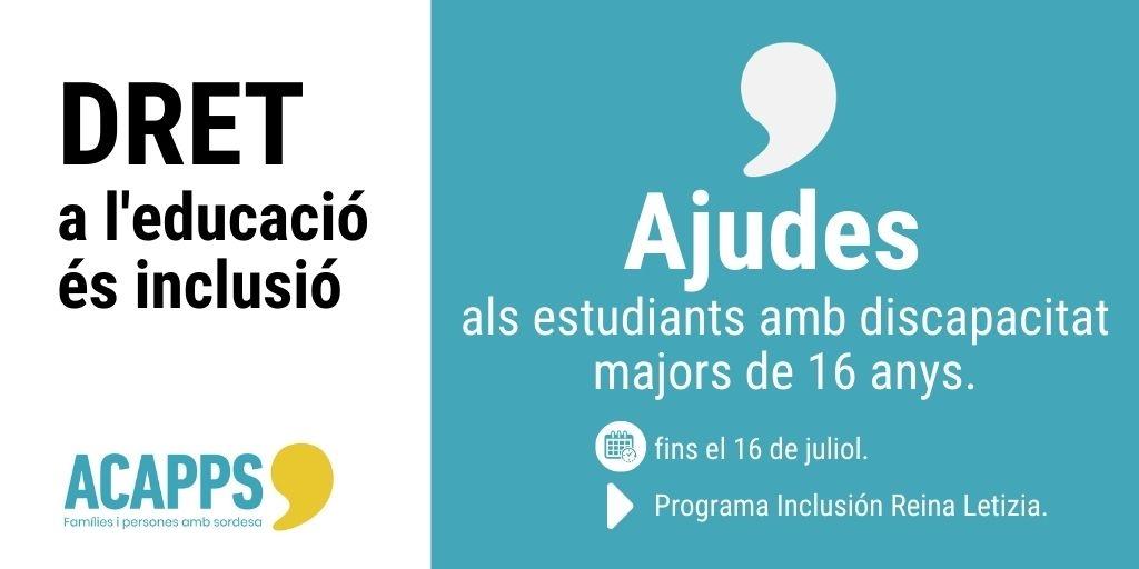 Ajudes fins a 15.000€ per als estudiants amb discapacitat majors de 16 anys per garantir el seu dret a l'educació en igualtat